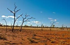 Australian landscape. In the red center, australian desert Stock Images
