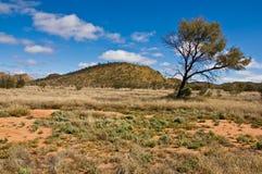 Australian landscape. In the northerm territory, australia Royalty Free Stock Photos