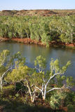 Australian landscape. Beautiful Australian landscape. Shot of a river with surrounded forest Royalty Free Stock Photo