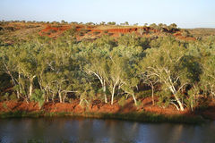 Australian landscape. Beautiful Australian landscape. Shot of a river with surrounded forest Stock Photo