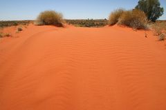 Australian landscape. Blue clear sky over the red Australian sandbank. Northern Territory, Australia Stock Photography