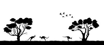 Australian landscape. Black silhouette of trees and kangaroo on white background. The nature of Australia. Isolated vector graphic Stock Photos