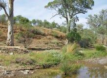 Australian landscape Royalty Free Stock Images