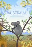 Australian landscape  poster. Stock Photos