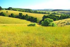 Australian landscape in summer Royalty Free Stock Photos