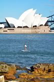 Australian man paddle board in Sydney Harbour Sydney  New South Royalty Free Stock Photo