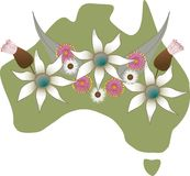 Australian Map. With native flora - gum leaves, gum nuts & flannel flowers Stock Photography