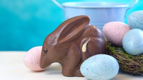 Australian milk chocolate Bilby Easter egg with eggs in nest and copy space. Stock Image