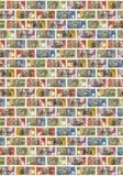 Australian Money Dollars Background. Background wall of australian dollar bills of various amounts stock photos