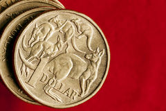 Australian Money One Dollar Coins over Red. Australian money.  One dollar coins over red background.  Overhead view Stock Photos