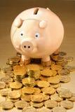 Australian Money Piggy Bank. Piggy bank with lots of Australian one dollar coins spread around it royalty free stock photos