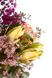 Australian Native Flower Bouquet. Bouquet of fresh australian native flowers royalty free stock photo