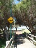 Australian nature province road sign. Ducks Australia bride Mandurah Stock Photography