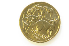 Australian One Dollar Coin. With kangaroos, in close-up with soft shadow