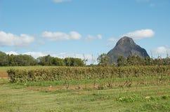 Australian organic farm Royalty Free Stock Images