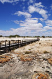 Australian outback. Australian beach (close to Monkey Mia, Western Australia) full of stromatolites. Its growth rings provide the information on local Stock Image