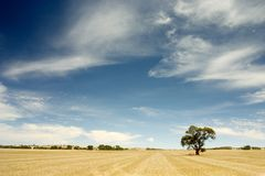 Australian Outback Royalty Free Stock Photo