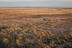 Australian outback in drought. Conditions, dry, dusty and arid Stock Images