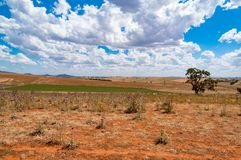 Australian outback landscape. Of dry pastures and paddocks on sunny day. Australia Stock Photography