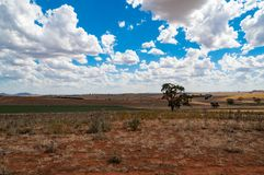 Australian outback landscape. Of dry pastures and paddocks on sunny day. Australia Stock Photo