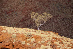Australian Outback - Pilbara Royalty Free Stock Photo