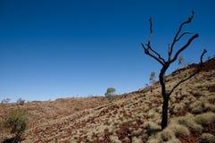 Australian Outback - Pilbara Stock Images