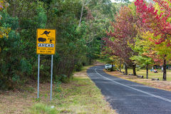 Australian outback road with Wildlife ahead road sign. Country road in rural Australia with Kangaroo, Wombats, Wildlife ahead on the road warning road sign royalty free stock photos