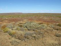 The Australian outback Royalty Free Stock Images