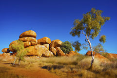 Australian Outback. View of the beautiful landscape in the Australian outback Royalty Free Stock Images