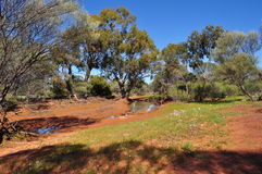 Australian outback water hole Royalty Free Stock Photography