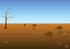 Australian panorama. Daily Australian panorama, vectorial illustration Stock Photography