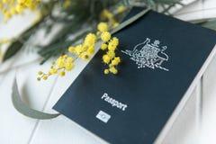 Australian passport with wattle Stock Images