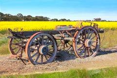 Australian pioneers wooden wagon. Old Australian pioneers wooden wagon in canola field Royalty Free Stock Photos