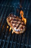 Australian Porterhouse Stock Photo
