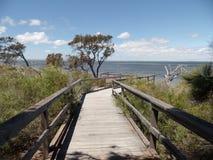 Australian Province Western Australia. Gulf down under Perth Mandurah eucalyptus river trees Royalty Free Stock Photography