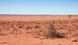 Australian red desert Royalty Free Stock Photos