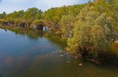 Australian river Stock Photos