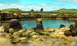 Australian Rockpool. A natural rock pool in Australia Royalty Free Stock Images
