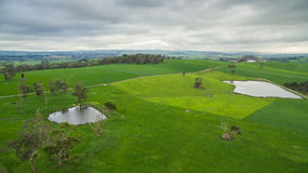 Australian rural farm land. Aerial view of farmland in Nerrena, South Gippsland, Australia Stock Images