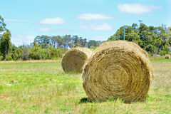 Australian rural field landscape with haystacks Stock Images