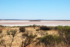 Australian Salt Lake and spinifex grass Stock Image