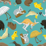 Australian seamless pattern vector. Australian kangaroo seamless pattern. Wildlife abstract cartoon animals art. Zoo national drawing texture. Vector mammal stock illustration