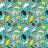 Australian seamless pattern vector. Australian kangaroo seamless pattern. Wildlife abstract cartoon animals art. Zoo national drawing texture. Vector mammal Stock Photos