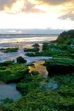Australian Seascpe Stock Photography