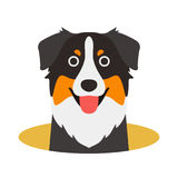 Australian Shepherd dog on the hole,watching, vector illustratio. Australian Shepherd dog on the hole,watching  vector illustration Stock Photo