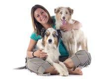 Australian shepherds and woman stock photo