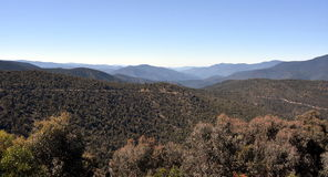 Australian Snowy Mountains in summer. Royalty Free Stock Photo