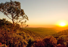 Australian Sunset Stock Photos