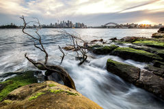 Australian Sydney cityline from CBD via Harbour Bridge to North Sydney in a distance over Harbour waters at low tide. With foreground Tree Water flow and rocks stock image