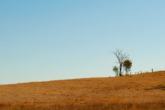 Australian undulating outback winter horizon Royalty Free Stock Image